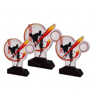 Taekwondo Trophy Series